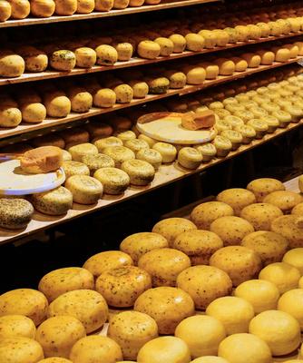 Alles Käse aus Holland