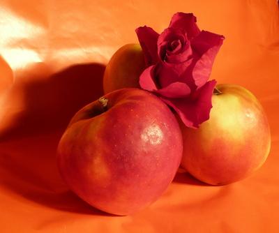 Äpfel mit Rose
