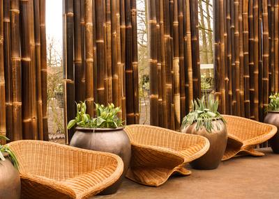 Garten-Wellness mit Bambus