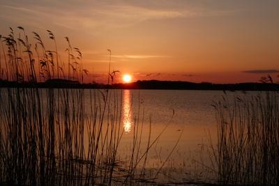 Sonnenuntergang am Achterwasser/Usedom