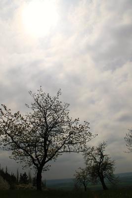 Haßberg-Toskana 03