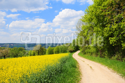 Wandern im Mai