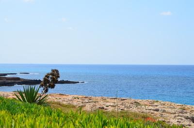 Meerblick bei Agia Napa