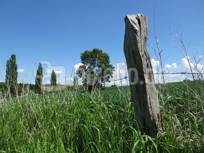 fence  -  Weidezaun