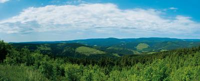 Kickelhahn Panorama