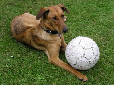 Lilli mit Ball