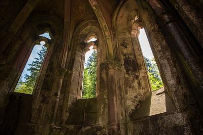 Schwarzwald durch Klosterruine Allerheiligen