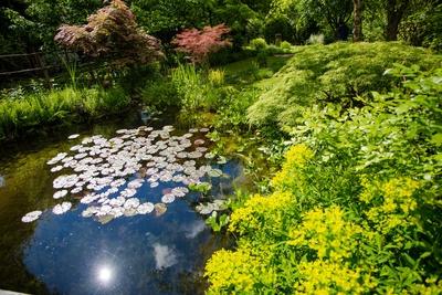 Eine Oase im privaten Gartenpark