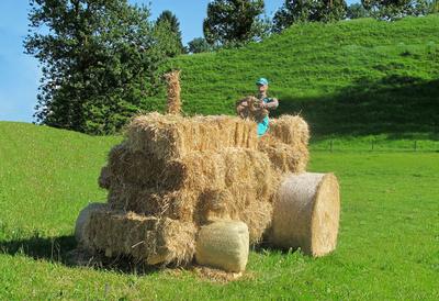 Bauern-Kunst
