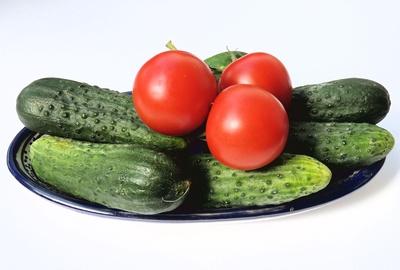 Rot-Grüne Koalition