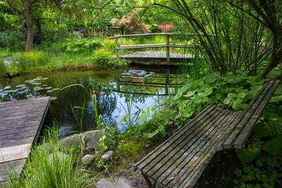 Garten-Oase mit natürlichem Charme