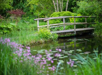 Gartentraum mit Brücke