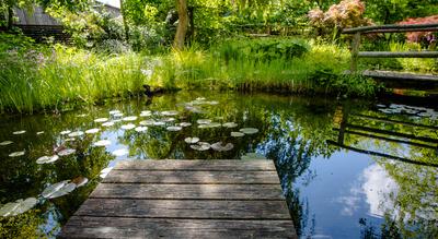 Gartentraum mit Teich und Brücke 2
