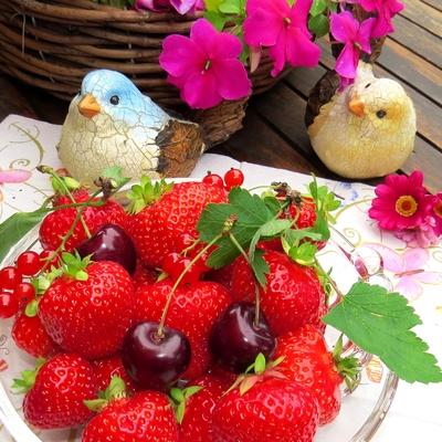 Fruchtiges Vergnügen