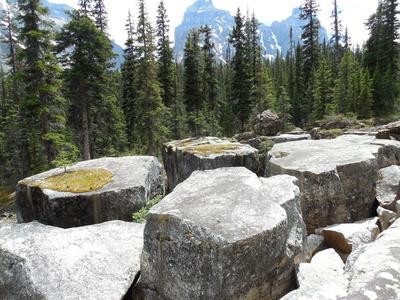 Kanada - Felsen