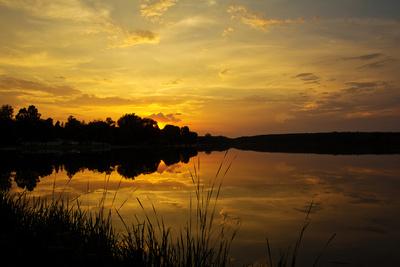 Sommerabend am Weiher