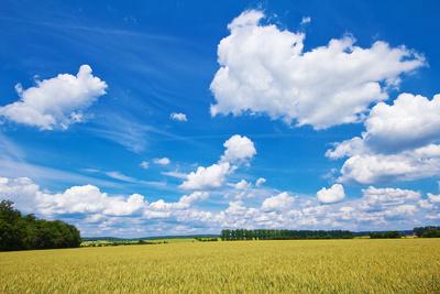 Himmel über dem Frankenland