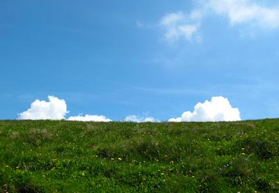 Alpwiesen-Skyline