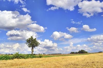 Thüringer Himmel
