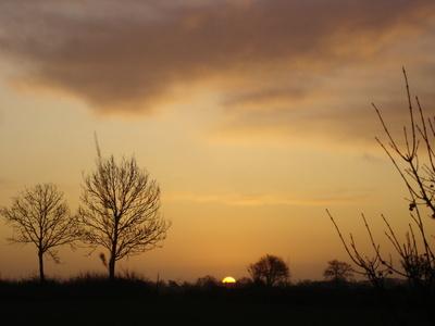 Sonnenaufgang auf Öland