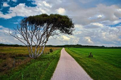 Wegmarke auf Schiermonnikoog