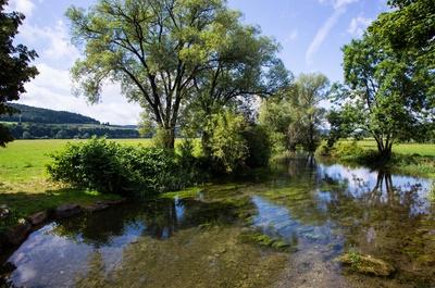 Donau-Nebenfluss bei Tuttlingen 1
