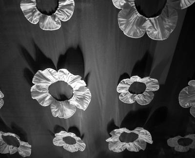 kostenloses foto vorhang mit bl ten in schwarz wei. Black Bedroom Furniture Sets. Home Design Ideas