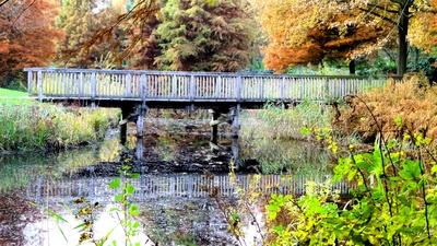 Brücke im herbstlichen Park