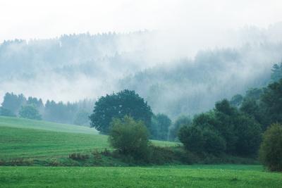 Herbstnebel im Wiesental mit Wald 02