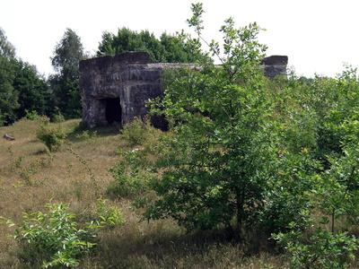 Bunkerruine noch aus Kriegszeiten