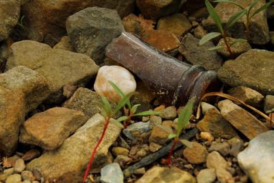 Müll zwischen Steinen
