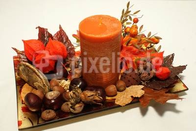 Herbstliche Impressionen (1)