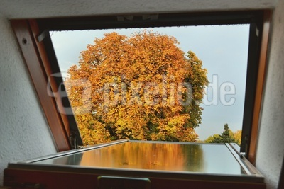 draußen ist Herbst