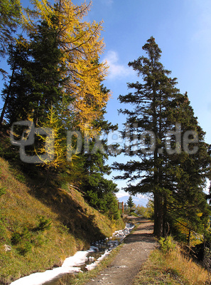 Der Herbst aus Bergsicht (1)