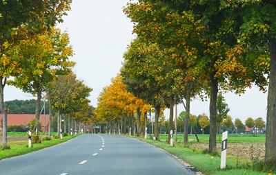 Bunte Landstraße