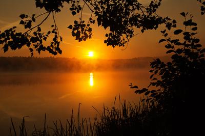 Herbstmorgen am Weiher