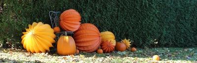 Herbstliche Gartendekoration