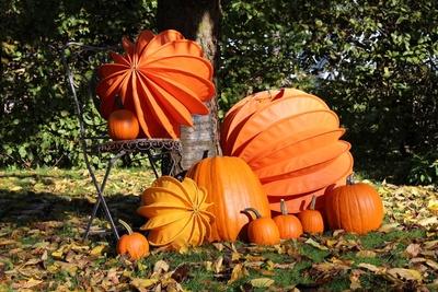 Lampions in der Herbstsonne