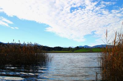 Herbstwandertag am Riegsee 05