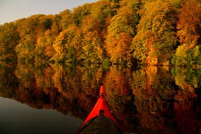 Herbst im Spiegelbild