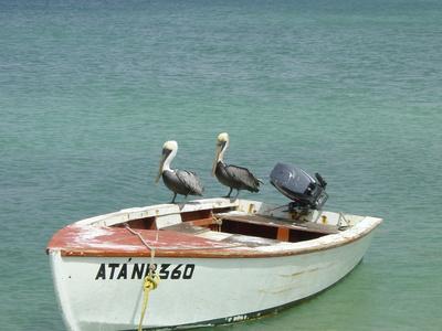 Zwei auf einem Boot