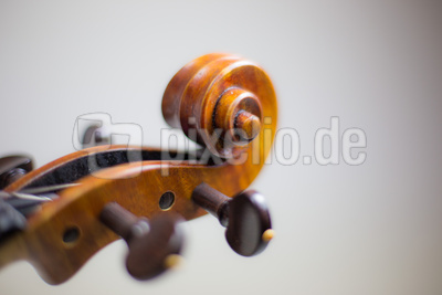 Geigenbau-Emotions 09 (Schnecke)