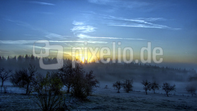 im Odenwald