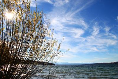 Herbst.Ufer 02