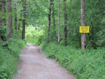 Enns-Radweg wird zur Loipe