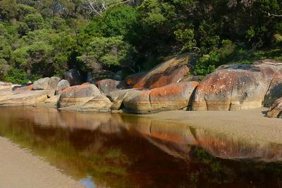 im Wilsons-Promontory-NP, Australien (2)