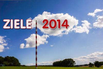 Richtungsweisend Ziele 2014
