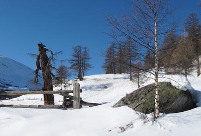 Im Wintermärchenland