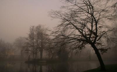 a dark foggy day