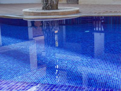 Pool-Freuden in sauberem Wasser
